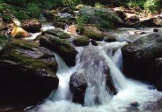 Beleza de caída branca calma de fluxo foto de stock