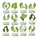 Beleza de Eco ilustração stock