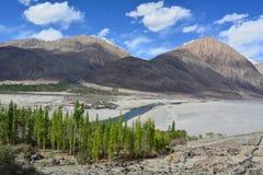Beleza de Ladakh Foto de Stock Royalty Free