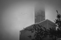 A beleza de Manhattan Fotografia de Stock Royalty Free