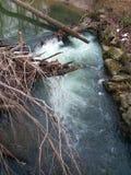 Beleza de uma queda da água fotos de stock