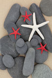 Beleza do beira-mar Imagem de Stock