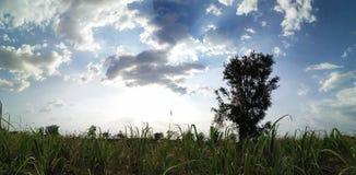 Beleza do céu na nuvem do dia fotos de stock