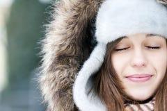 Beleza do inverno Imagens de Stock
