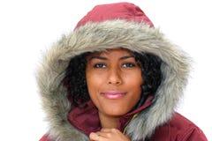Beleza do inverno foto de stock