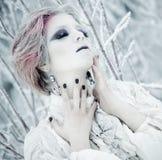 Beleza do inverno da rainha do gelo Imagem de Stock Royalty Free