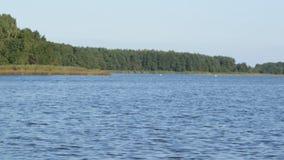 Beleza do lago vídeos de arquivo