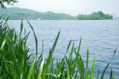 A beleza do lago ocidental em Hangzhou Imagens de Stock Royalty Free