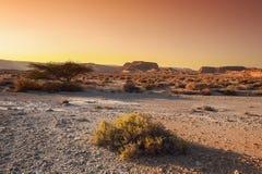 A beleza do Médio Oriente fotografia de stock