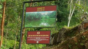 Beleza do país ascendente em Sri Lanka Fotografia de Stock
