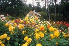 Beleza dos acres da costa Fotografia de Stock Royalty Free