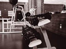 Beleza e benevolência do gym Fotos de Stock Royalty Free