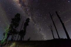 A beleza e a claridade proeminentes da Via Látea e do céu estrelado capturados da alta altitude no bromo da montagem, Indonésia fotos de stock