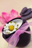 Beleza e tratamentos de relaxamento do wellness dos termas Fotografia de Stock Royalty Free