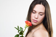 Beleza holandesa imagens de stock royalty free