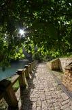 Beleza incrível da natureza na Abkhásia foto de stock royalty free