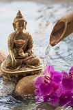 Beleza interna com água pura Imagem de Stock