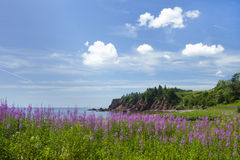 Beleza litoral da província de Novo Brunswick em Canadá Fotos de Stock