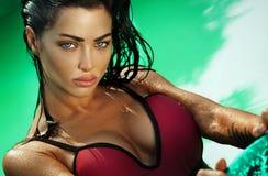 Beleza moreno 'sexy' que olha a câmera Imagens de Stock