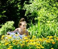 Beleza na natureza Fotos de Stock