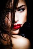 Beleza na obscuridade Imagens de Stock Royalty Free