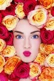 Beleza nas rosas foto de stock royalty free