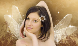 Beleza natural 13 Imagens de Stock Royalty Free