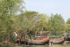 Beleza natural da ilha de Bhola imagens de stock royalty free