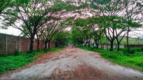 Beleza natural de Town modelo verde foto de stock royalty free