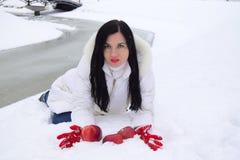 A beleza nova a morena pôs maçãs vermelhas sobre a neve imagens de stock royalty free