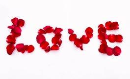 Beleza o amor da palavra das pétalas de rosas Fotografia de Stock Royalty Free