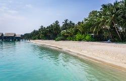 Beleza original da lagoa azul em Maldivas Imagens de Stock