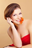 Beleza perfeita Fotografia de Stock Royalty Free