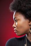 Beleza preta nova com penteado afro foto de stock royalty free