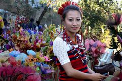 Beleza tribal Imagens de Stock Royalty Free