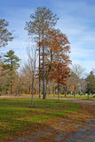 Belfast Maine city park in late autumn Royalty Free Stock Photo