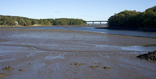 Belfast Maine Low Tide Stock Images