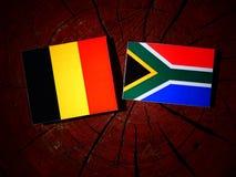 Belg flaga z południe - afrykanin flaga na drzewnym fiszorku odizolowywającym Obraz Stock