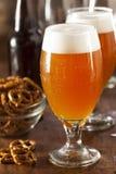 Belga de refrescamento Amber Ale Beer imagens de stock royalty free