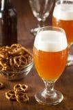 Belga di rinfresco Amber Ale Beer fotografie stock
