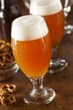 Belga di rinfresco Amber Ale Beer fotografia stock libera da diritti