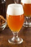 Belga di rinfresco Amber Ale Beer fotografie stock libere da diritti