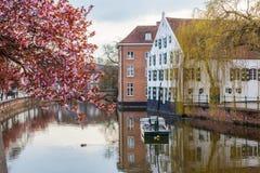 België in de lente royalty-vrije stock afbeelding