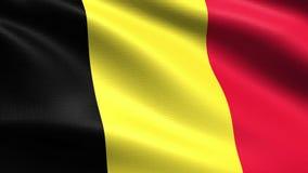 Belgia loopingu flaga 4K z falowanie tkaniny teksturą,
