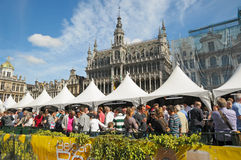 Belgian Beer Weekend Stock Image