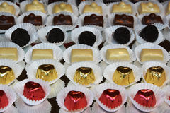 Belgian chocolate pralines Stock Image
