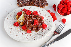 Belgian chocolate waffles with fresh raspberries, whipped cream and honey syrup.  Stock Image