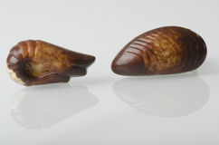 Belgian chocolates. Stock Images