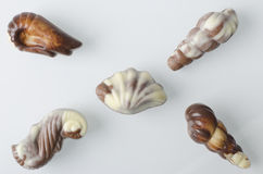 Belgian chocolates. Stock Photography