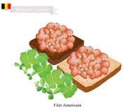 Fillet Americain, A Popular Dish in Belgium Stock Photography